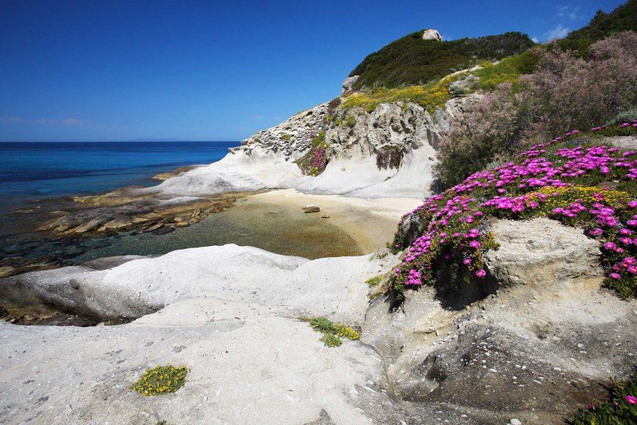 Visit Elba Island Tuscany Tourism bay of Sant'Andrea
