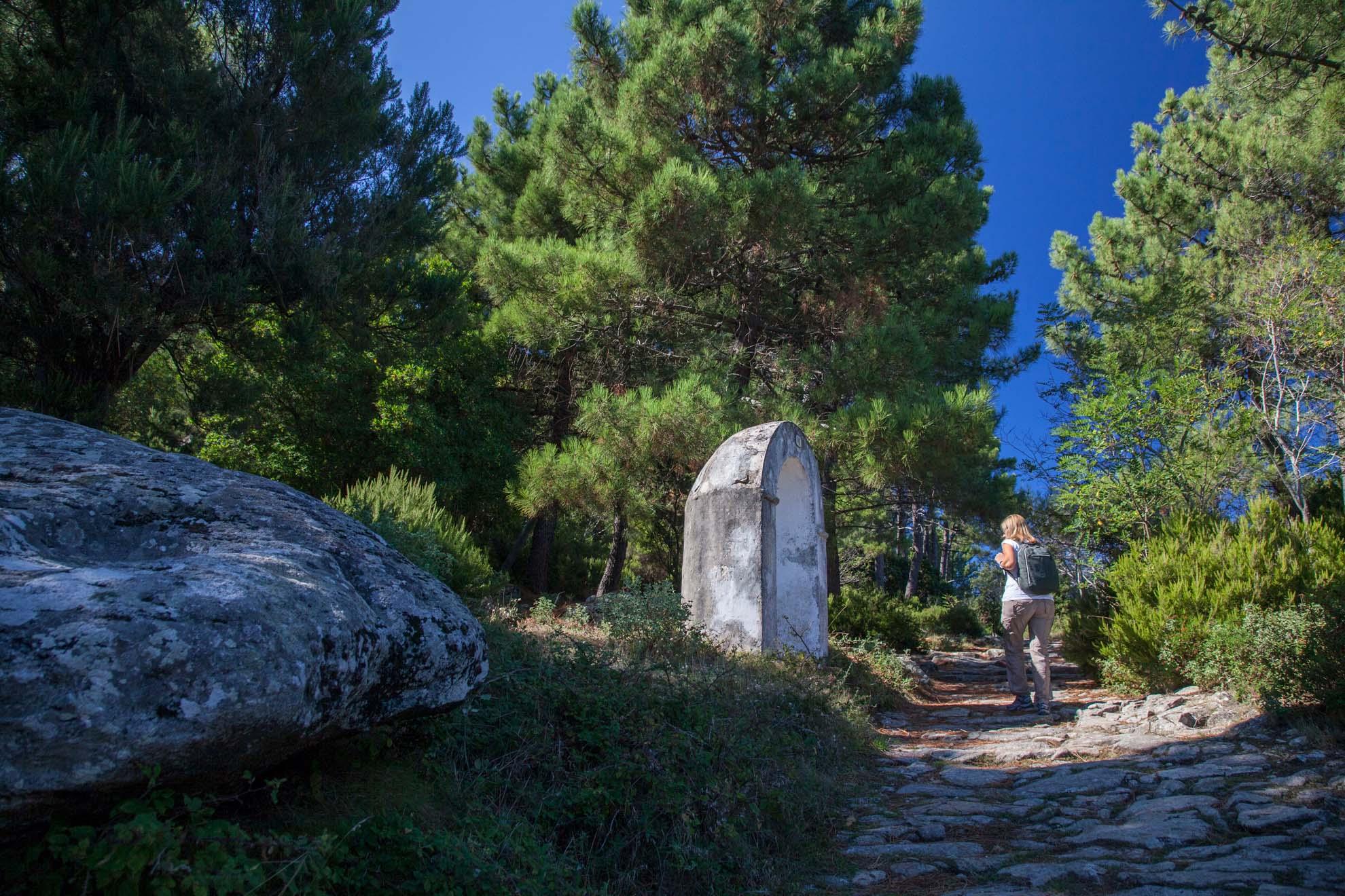 Visit Elba Island Tuscany Tourism Serra Ventosa