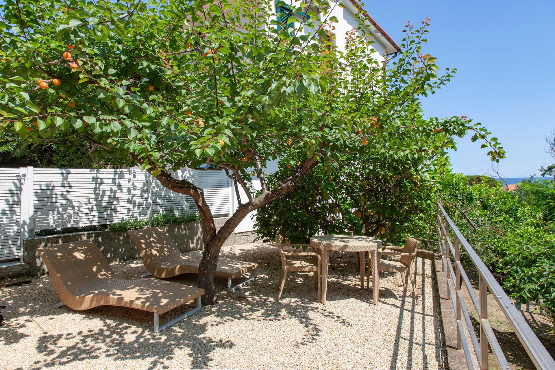 Visit Elba Island Tuscany Tourism Garden Hotels