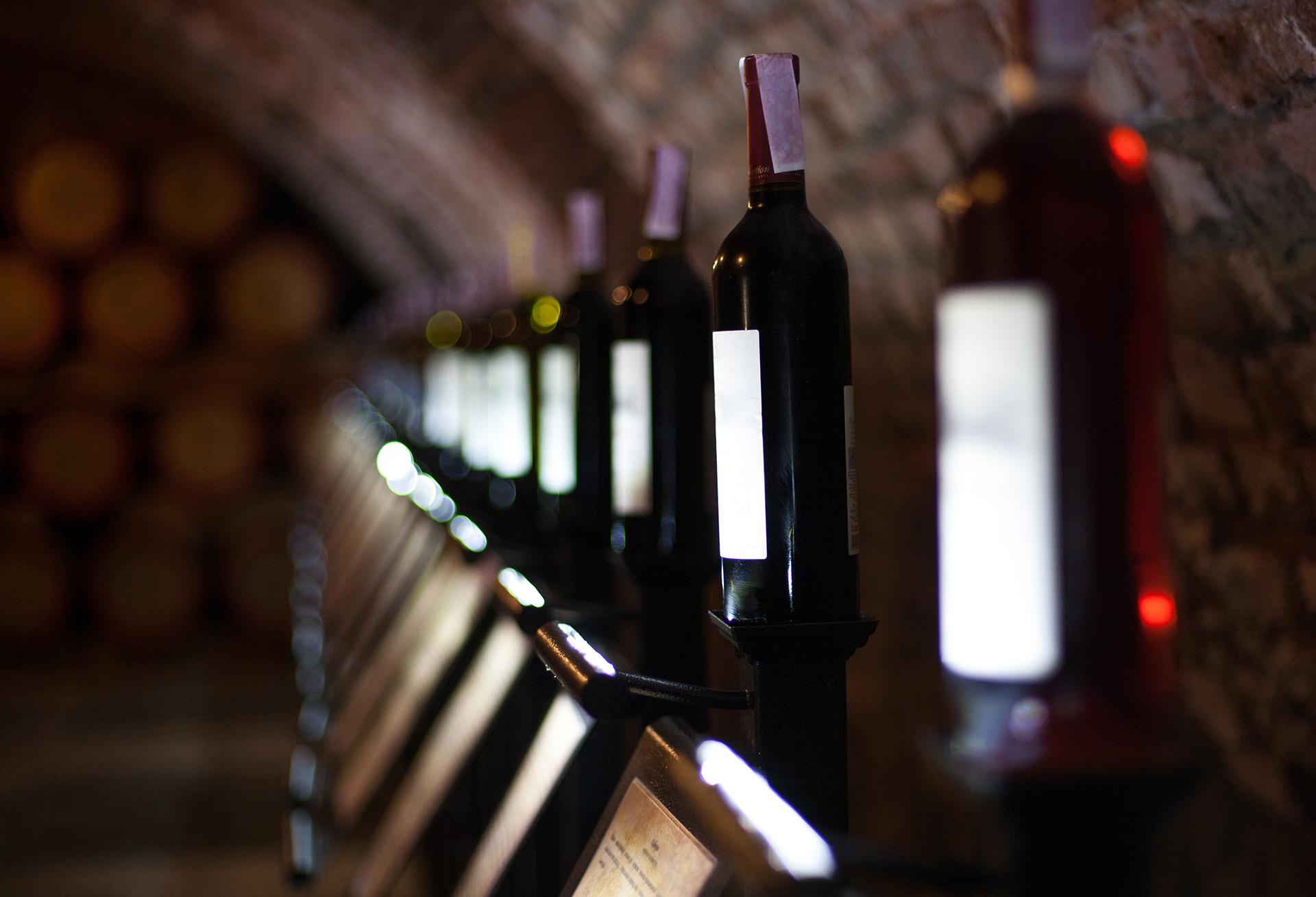 Visit Elba Island Tuscany Tourism Elba Wine